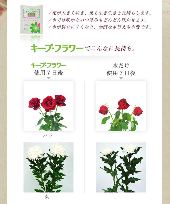 送料無料 キープ・フラワー 切花栄養剤 2L